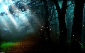 ray-of-light-in-mysterious-woods-72577